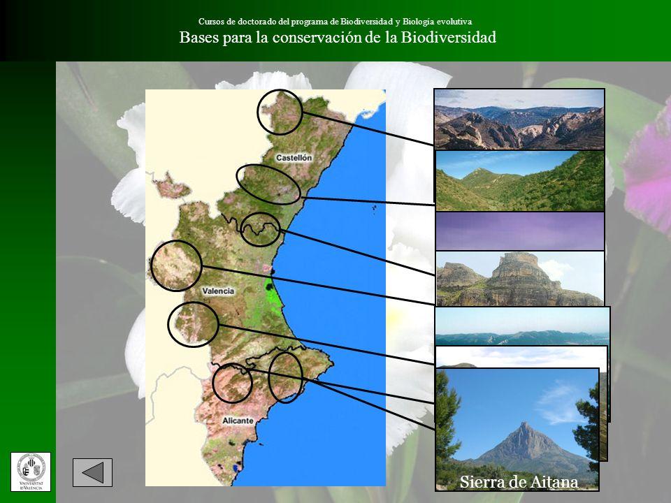 Cursos de doctorado del programa de Biodiversidad y Biología evolutiva Bases para la conservación de la Biodiversidad Sierra del Maestrazgo Sierra de