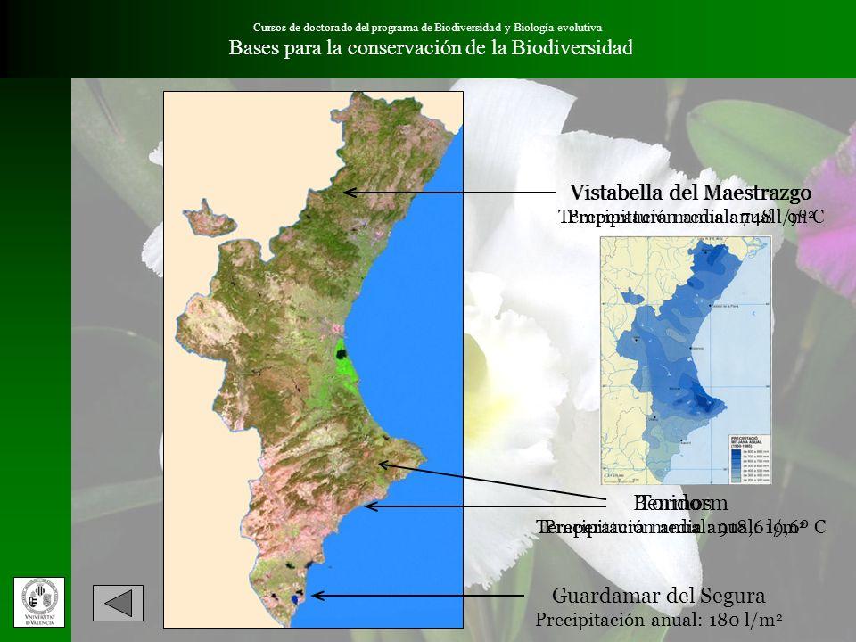 Cursos de doctorado del programa de Biodiversidad y Biología evolutiva Bases para la conservación de la Biodiversidad Vistabella del Maestrazgo Temper