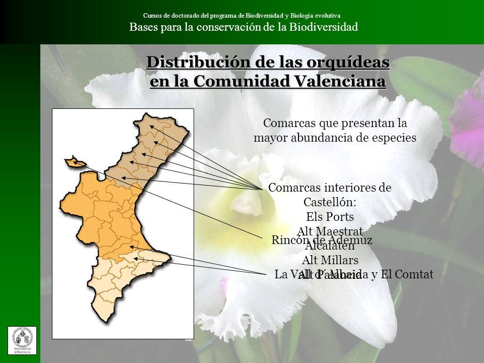 Cursos de doctorado del programa de Biodiversidad y Biología evolutiva Bases para la conservación de la Biodiversidad Hábitats con mayor abundancia de especies de orquídeas Matorrales y pastizales xerófilos Benissa, Alicante Hábitats de la directiva 92/43/CEE: Matorrales termomediterraneos y preestépicos (5330) Prados secos seminaturales y facies de matorral sobre sustrato calcáreo (6110 y 6210) Zonas subestépicas de gramíneas y anuales de Thero-Brachypodietae (6220) Arroyos, inmediaciones de fuentes y suelos inundados Vilafranca, Castellón Hábitats de la directiva 92/43/CEE: Prados húmedos mediterráneos de hierbas altas de Molinio-Holoschoenion (6420) Bosques galería de Salix alba y Populus alba (92A0) Formas más frías del hábitat (6210) Fredes, Castellón Bosques maduros de vegetación arbolada con alta concentración de humedad ambiental Hábitats de la directiva 92/43/CEE: Robledales ibéricos de Quercus faginea (9240) Alcornocales y encinares (9330 y 9340) Pinares sud-mediterráneos de pinos mesogeanos endémicos (9530) Pinares mediterráneos de pinos mesogeanos endémicos (9540) Diversos tipos relictuales de vegetación eurosiberiana como tileras (9180) y tejeras (9580)