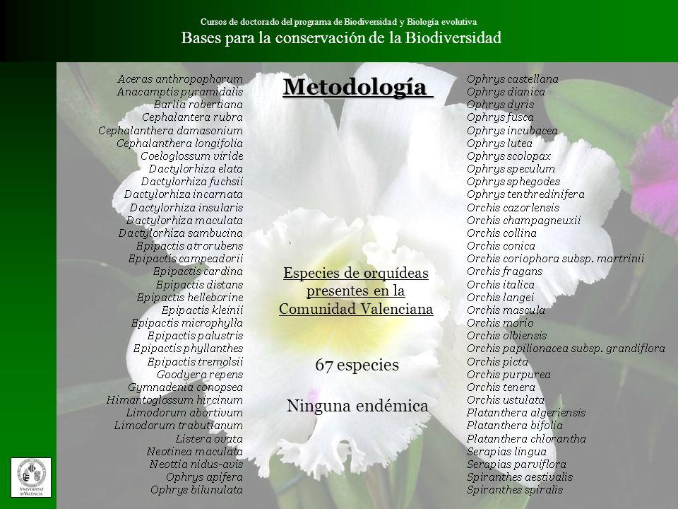 Cursos de doctorado del programa de Biodiversidad y Biología evolutiva Bases para la conservación de la BiodiversidadMetodología Selección de criterios Criterio 5.