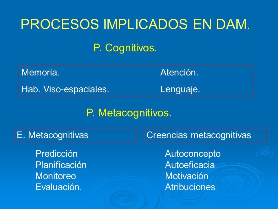 PROCESOS IMPLICADOS EN DAM. P. Cognitivos. Memoria.Atención. Hab. Viso-espaciales.Lenguaje. P. Metacognitivos. E. MetacognitivasCreencias metacognitiv