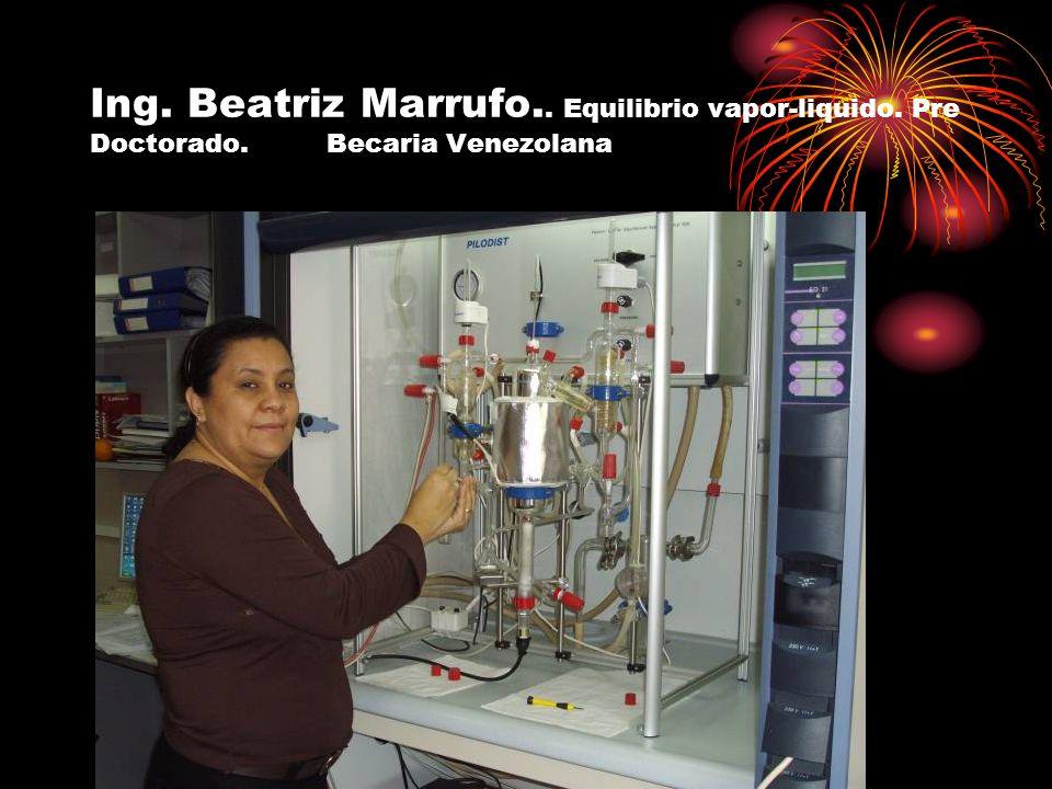 Ing. Beatriz Marrufo.. Equilibrio vapor-liquido. Pre Doctorado. Becaria Venezolana