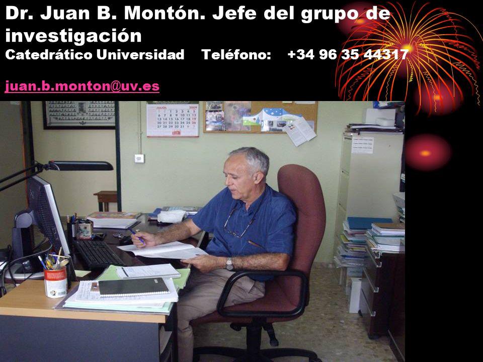 Dr. Juan B. Montón. Jefe del grupo de investigación Catedrático Universidad Teléfono: +34 96 35 44317 juan.b.monton@uv.es juan.b.monton@uv.es