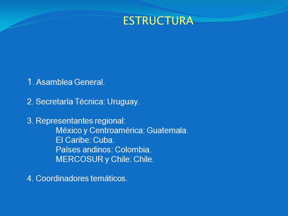 ESTRUCTURA 1. Asamblea General. 2. Secretaría Técnica: Uruguay. 3. Representantes regional: México y Centroamérica: Guatemala. El Caribe: Cuba. Países