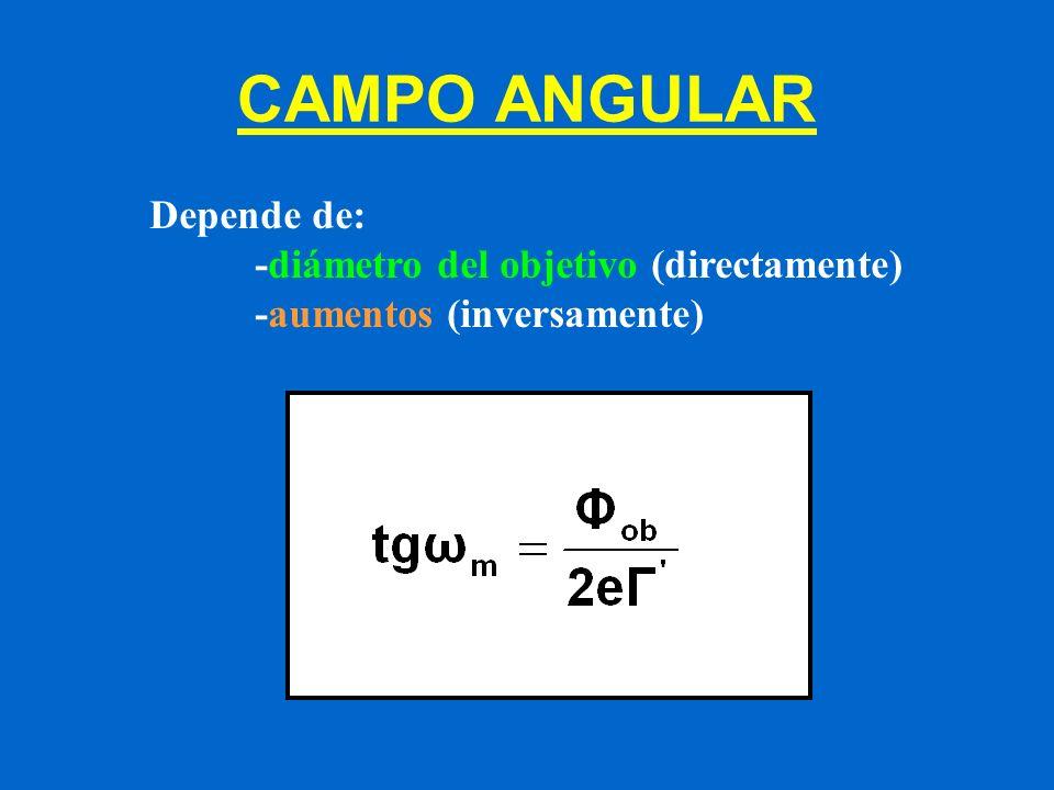 CAMPO ANGULAR Depende de: -diámetro del objetivo (directamente) -aumentos (inversamente)