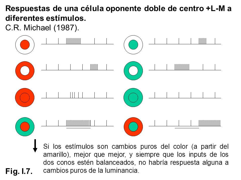 Respuestas de una célula oponente doble de centro +L-M a diferentes estímulos. C.R. Michael (1987). Fig. I.7. Si los estímulos son cambios puros del c