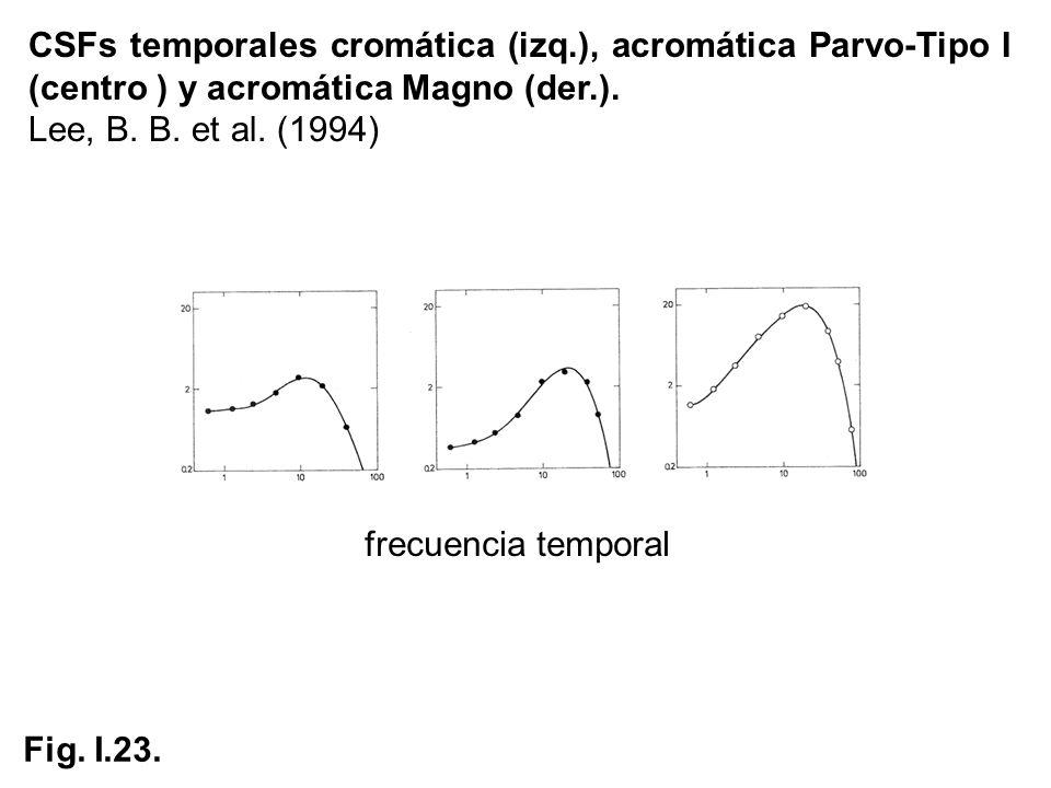 CSFs temporales cromática (izq.), acromática Parvo-Tipo I (centro ) y acromática Magno (der.). Lee, B. B. et al. (1994) frecuencia temporal Fig. I.23.