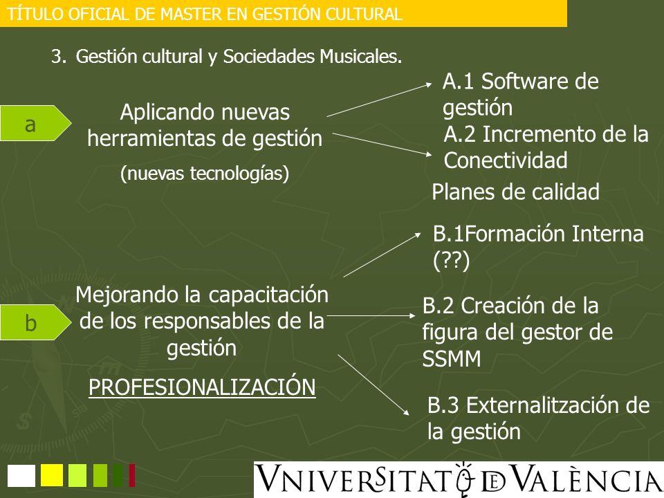 TÍTULO OFICIAL DE MASTER EN GESTIÓN CULTURAL 3.Gestión cultural y Sociedades Musicales. Aplicando nuevas herramientas de gestión (nuevas tecnologías)