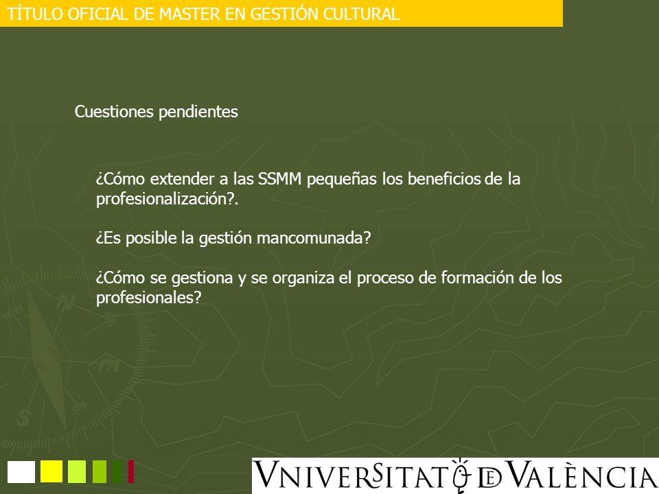 TÍTULO OFICIAL DE MASTER EN GESTIÓN CULTURAL Cuestiones pendientes ¿Cómo extender a las SSMM pequeñas los beneficios de la profesionalización?. ¿Es po