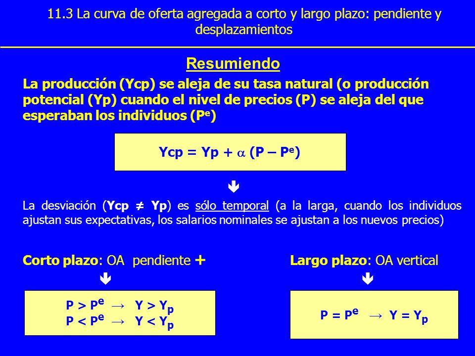 11.3 La curva de oferta agregada a corto y largo plazo: pendiente y desplazamientos Resumiendo La producción (Ycp) se aleja de su tasa natural (o prod