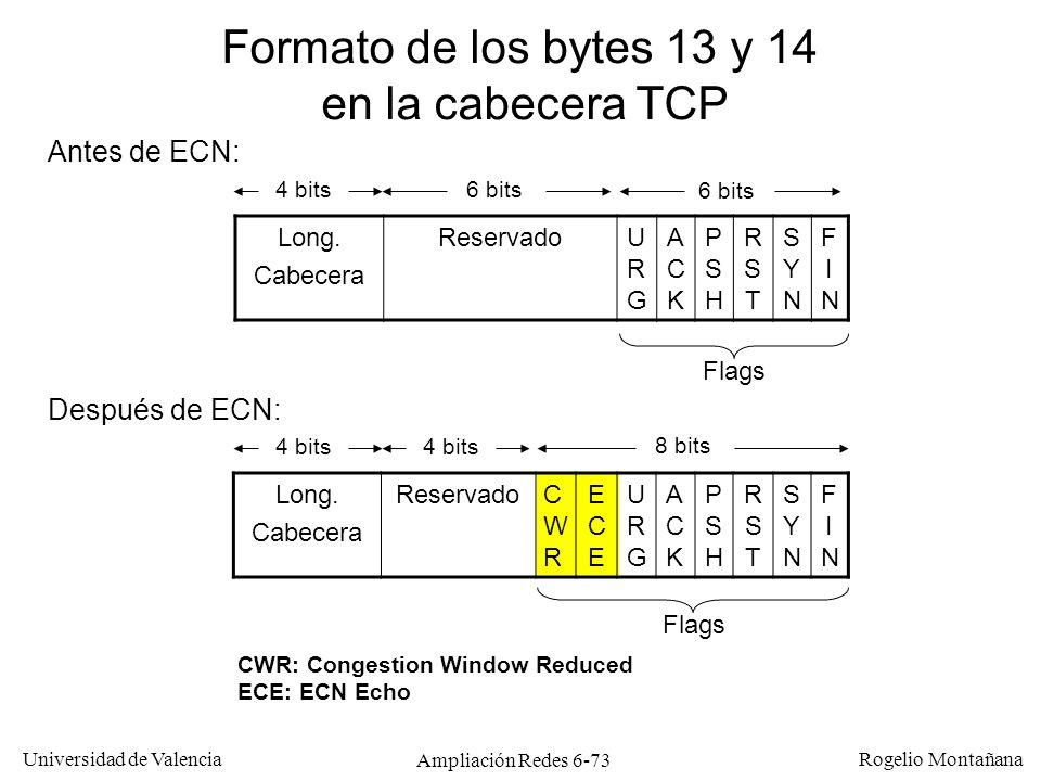 Universidad de Valencia Rogelio Montañana Ampliación Redes 6-73 Long. Cabecera ReservadoCWRCWR ECEECE URGURG ACKACK PSHPSH RSTRST SYNSYN FINFIN Format