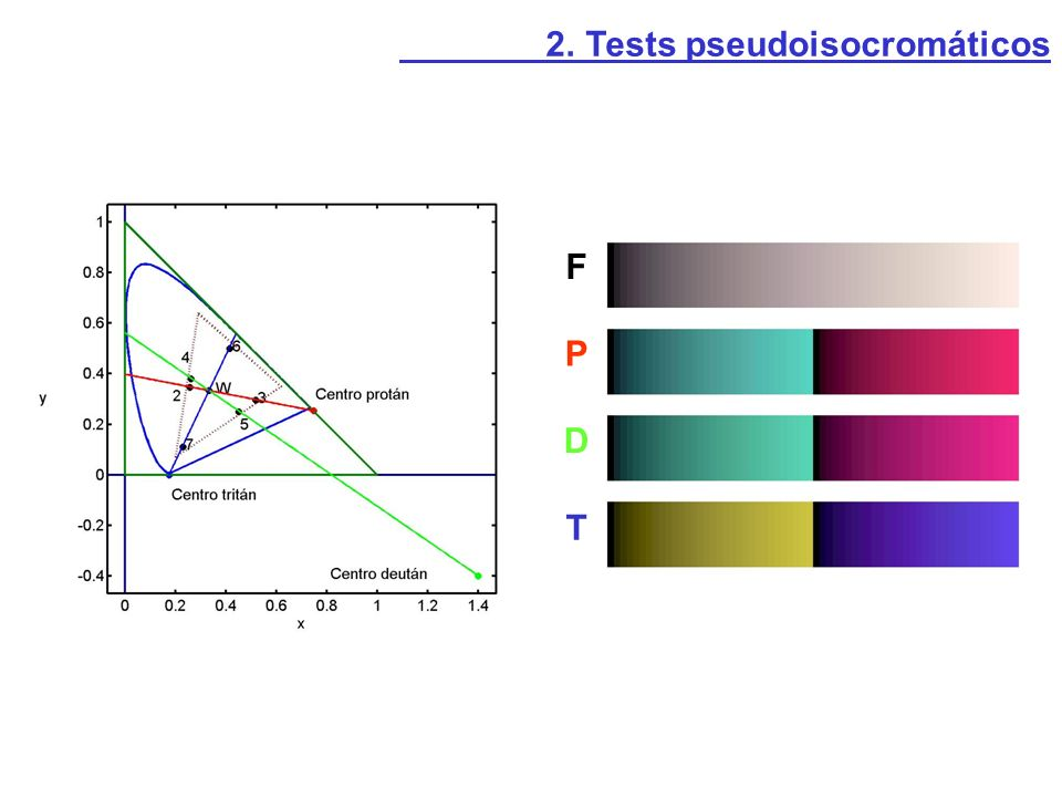 2. Tests pseudoisocromáticos F P D T