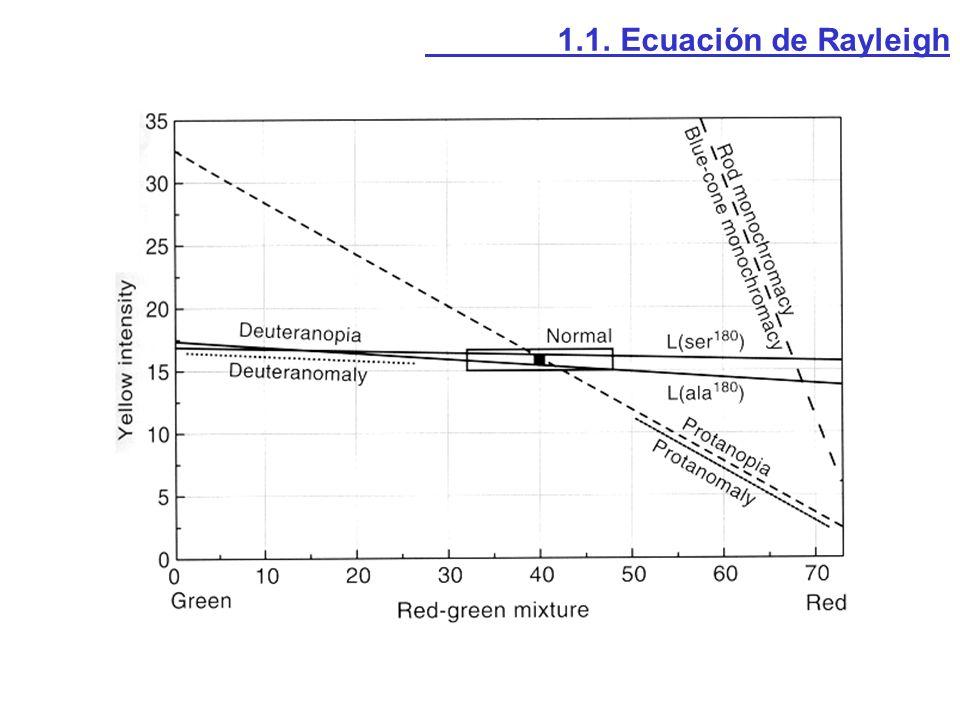 1.1. Ecuación de Rayleigh