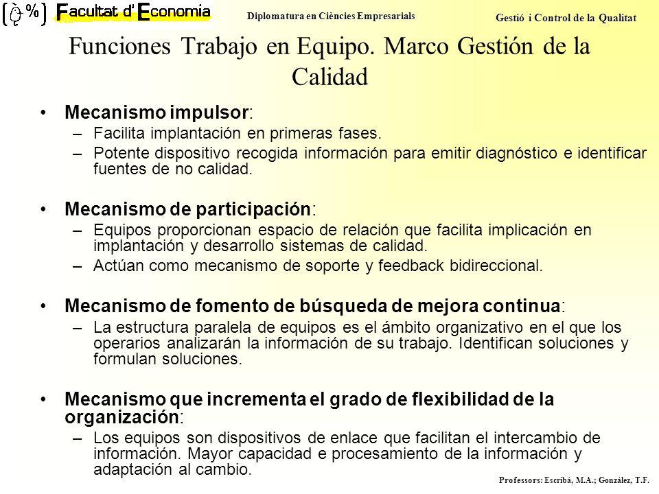 Diplomatura en Ciències Empresarials Gestió i Control de la Qualitat Professors : Escribá, M.A.; González, T.F. Funciones Trabajo en Equipo. Marco Ges