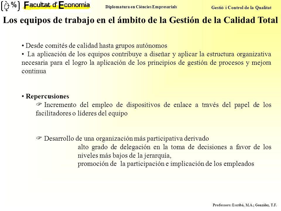 Diplomatura en Ciències Empresarials Gestió i Control de la Qualitat Professors : Escribá, M.A.; González, T.F. Los equipos de trabajo en el ámbito de