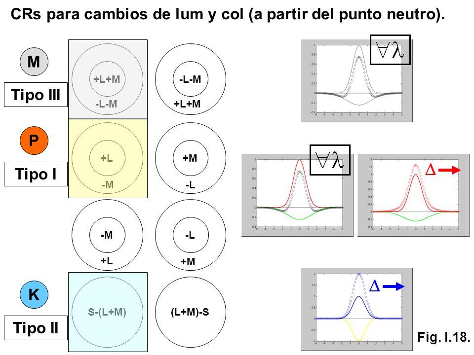 S-(L+M)(L+M)-S K +L+M -L-M +L+M M P +L -M +M -L -M +L -L +M Tipo III Tipo I Tipo II CRs para cambios de lum y col (a partir del punto neutro). Fig. I.