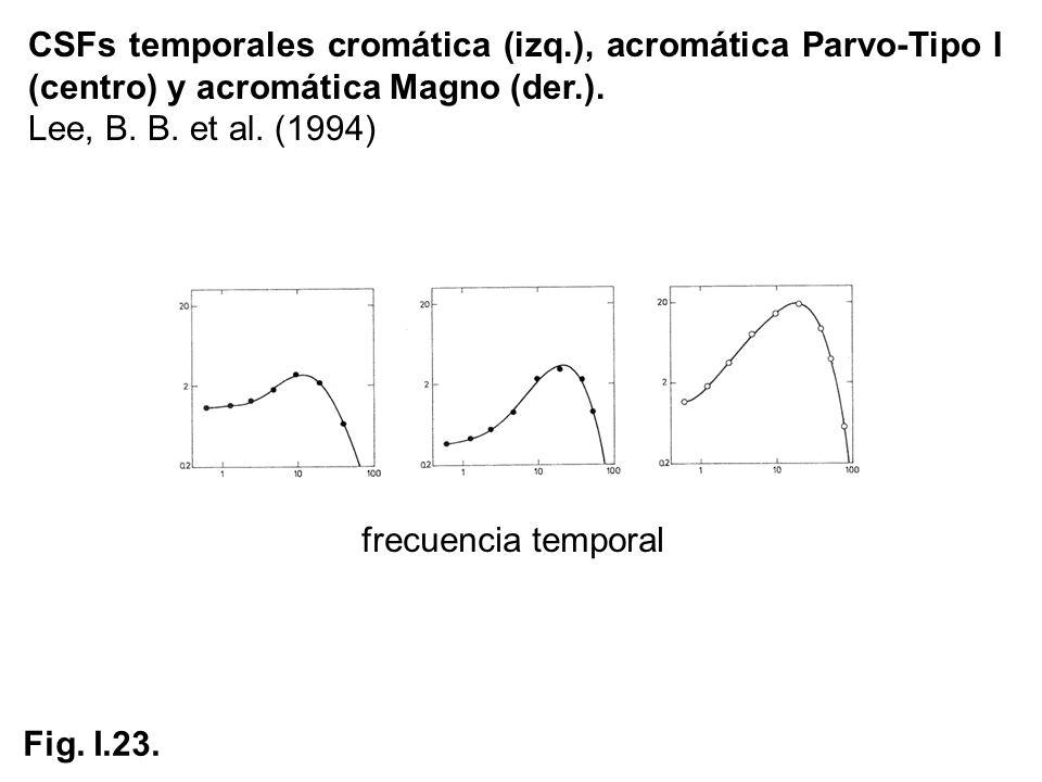 CSFs temporales cromática (izq.), acromática Parvo-Tipo I (centro) y acromática Magno (der.). Lee, B. B. et al. (1994) frecuencia temporal Fig. I.23.