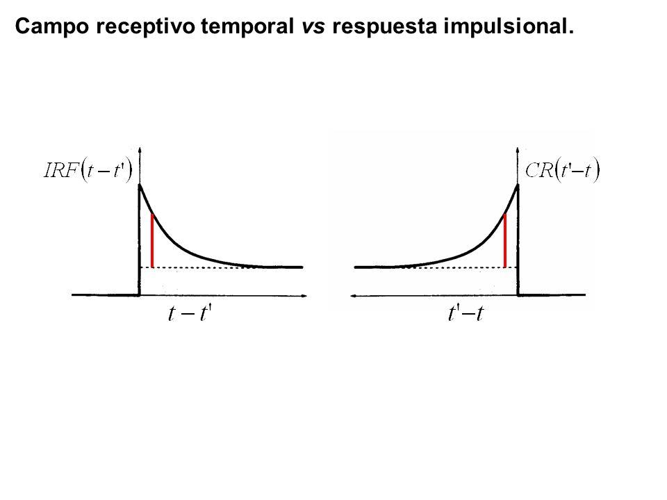 Campo receptivo temporal vs respuesta impulsional.