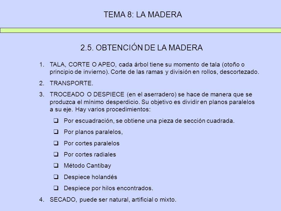 TEMA 8: LA MADERA 2.5. OBTENCIÓN DE LA MADERA 1.TALA, CORTE O APEO, cada árbol tiene su momento de tala (otoño o principio de invierno). Corte de las