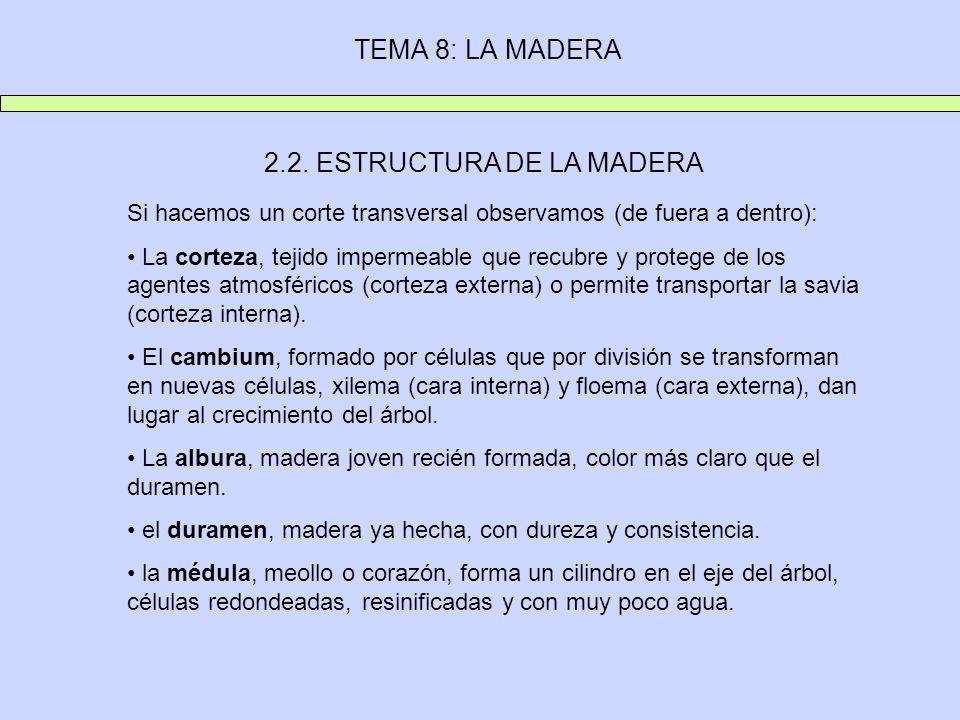 TEMA 8: LA MADERA 2.2. ESTRUCTURA DE LA MADERA Si hacemos un corte transversal observamos (de fuera a dentro): La corteza, tejido impermeable que recu