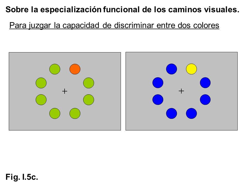 Sobre la especialización funcional de los caminos visuales. Fig. I.5c. Para juzgar la capacidad de discriminar entre dos colores