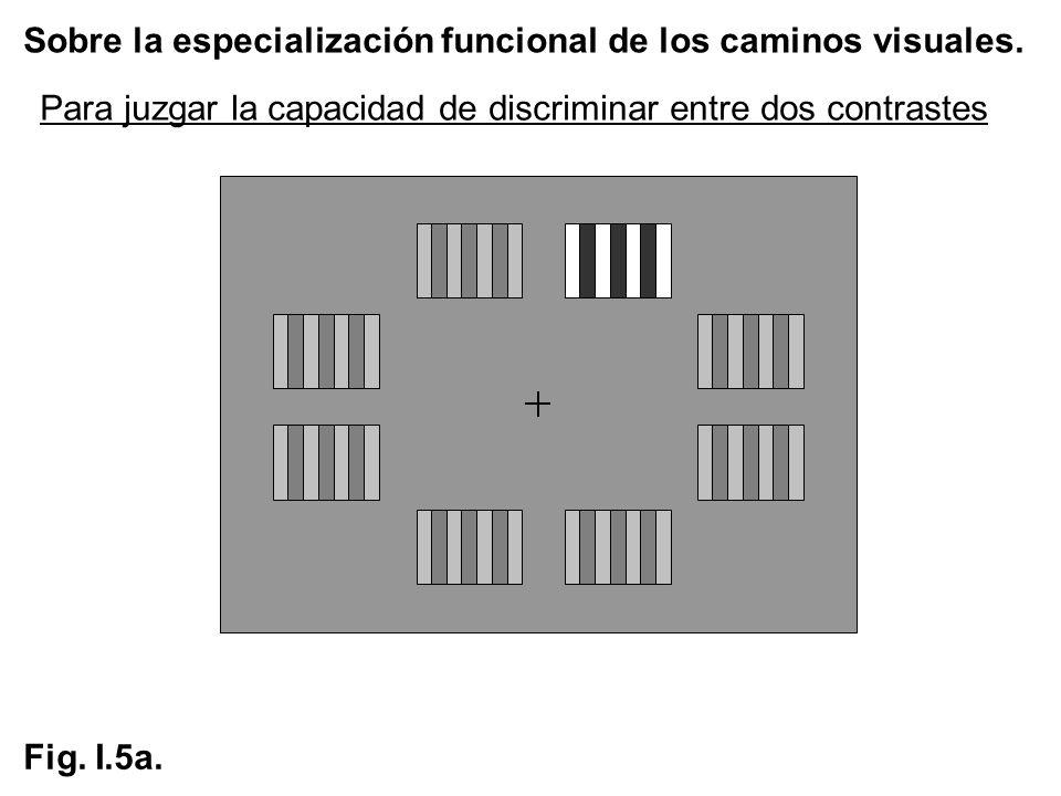 Sobre la especialización funcional de los caminos visuales. Fig. I.5a. Para juzgar la capacidad de discriminar entre dos contrastes