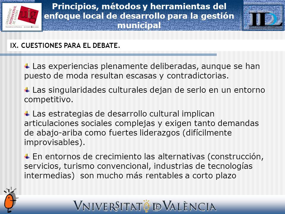 IX. CUESTIONES PARA EL DEBATE.