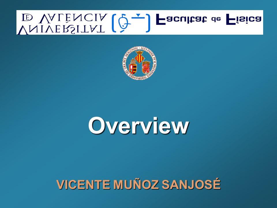Overview VICENTE MUÑOZ SANJOSÉ
