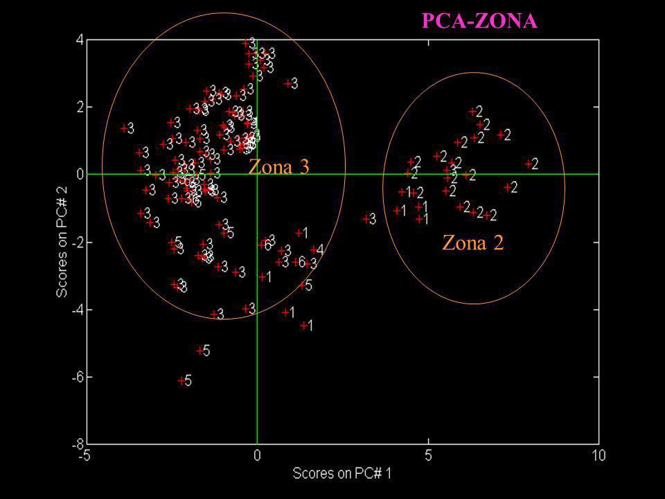 Zona 2 Zona 3 PCA-ZONA