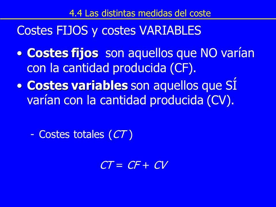 Copyright © 4004 South-Western Costes FIJOS y costes VARIABLES Costes fijosCostes fijos son aquellos que NO varían con la cantidad producida (CF). Cos