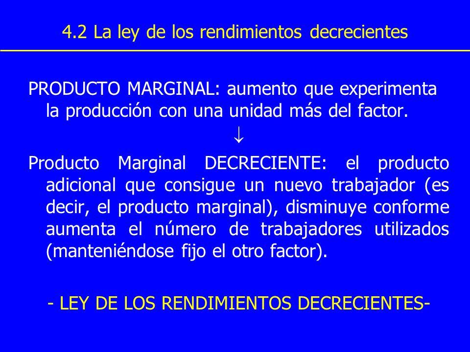 4.2 La ley de los rendimientos decrecientes PRODUCTO MARGINAL: aumento que experimenta la producción con una unidad más del factor. Producto Marginal