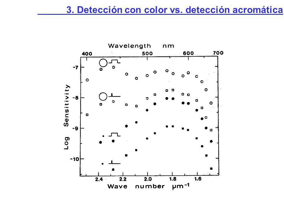 Relación entre umbrales psicofísicos y sensibilidades espectrales de las células Kalionatis y Harwerth, 1990 3.2.