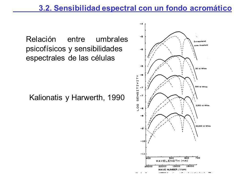 Relación entre umbrales psicofísicos y sensibilidades espectrales de las células Kalionatis y Harwerth, 1990 3.2. Sensibilidad espectral con un fondo