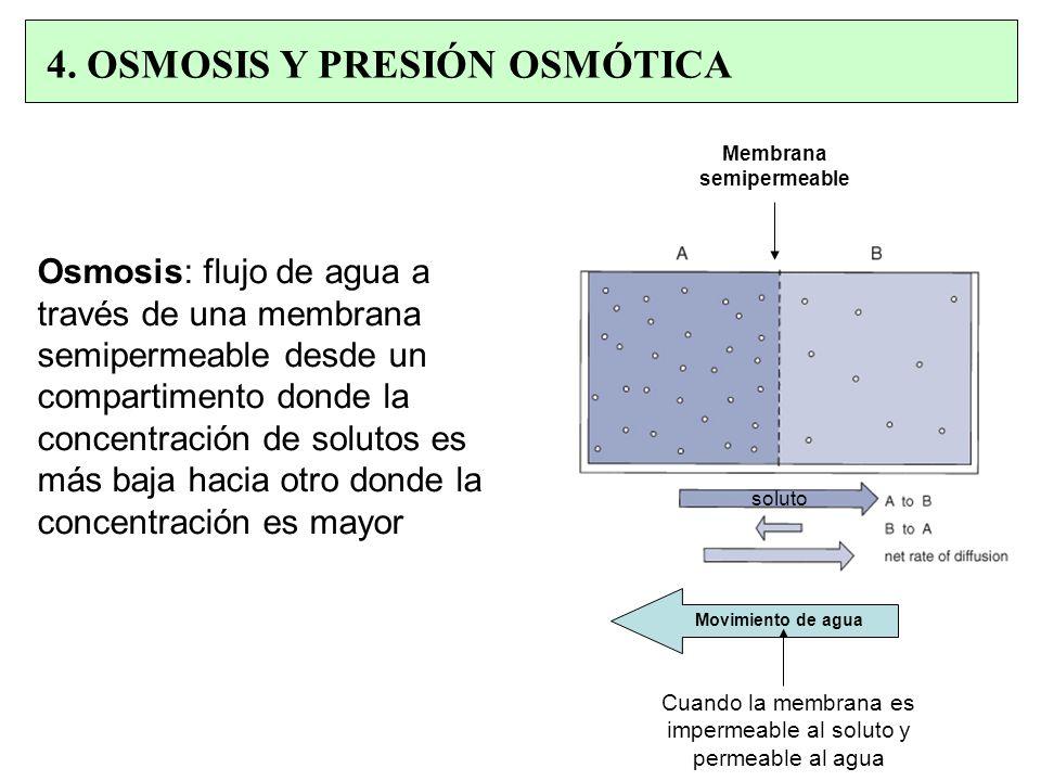 Osmosis: flujo de agua a través de una membrana semipermeable desde un compartimento donde la concentración de solutos es más baja hacia otro donde la