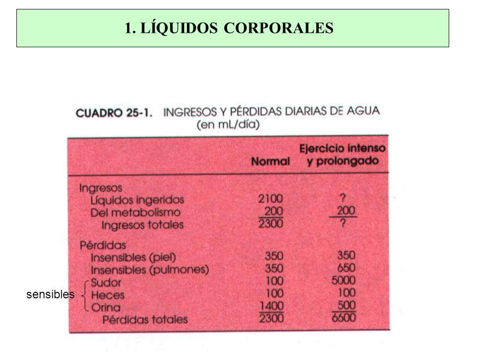 Agua Total 100% (40 – 42 L) 67% LIC (28 L) Líquido Intersticial 25% (10 L) Plasma 8% (3.5 L) LEC = Fluído Intersticial + Plasma LEC 1.