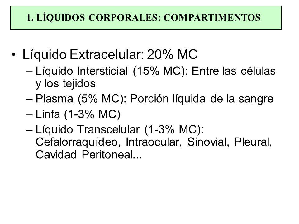 Líquido Extracelular: 20% MC –Líquido Intersticial (15% MC): Entre las células y los tejidos –Plasma (5% MC): Porción líquida de la sangre –Linfa (1-3
