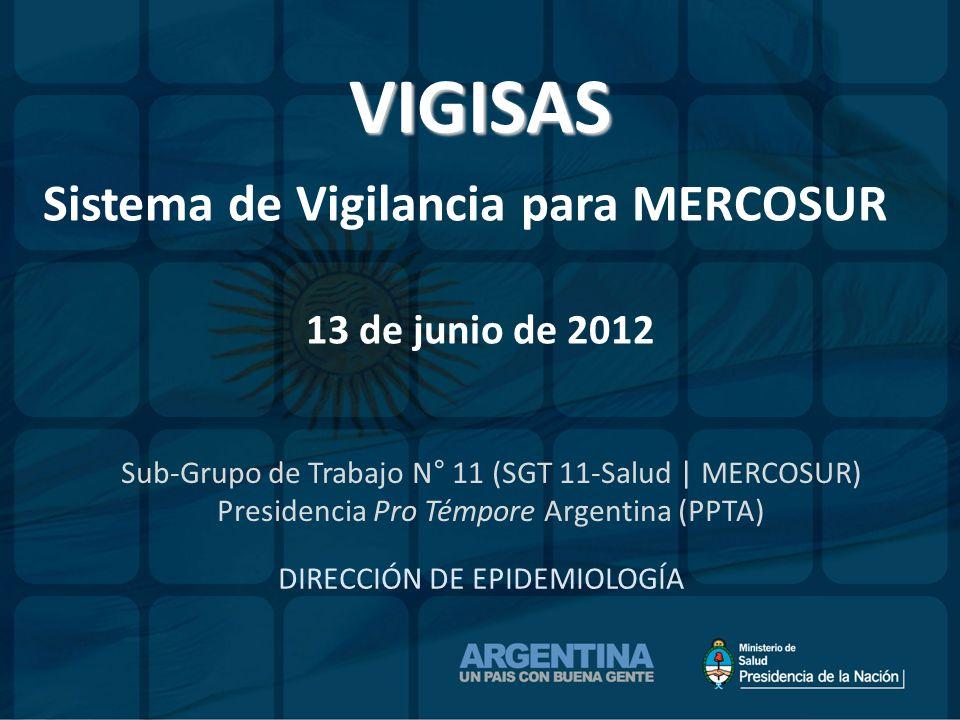 DIRECCIÓN DE EPIDEMIOLOGÍA VIGISAS Sistema de Vigilancia para MERCOSUR 13 de junio de 2012 Sub-Grupo de Trabajo N° 11 (SGT 11-Salud | MERCOSUR) Presid