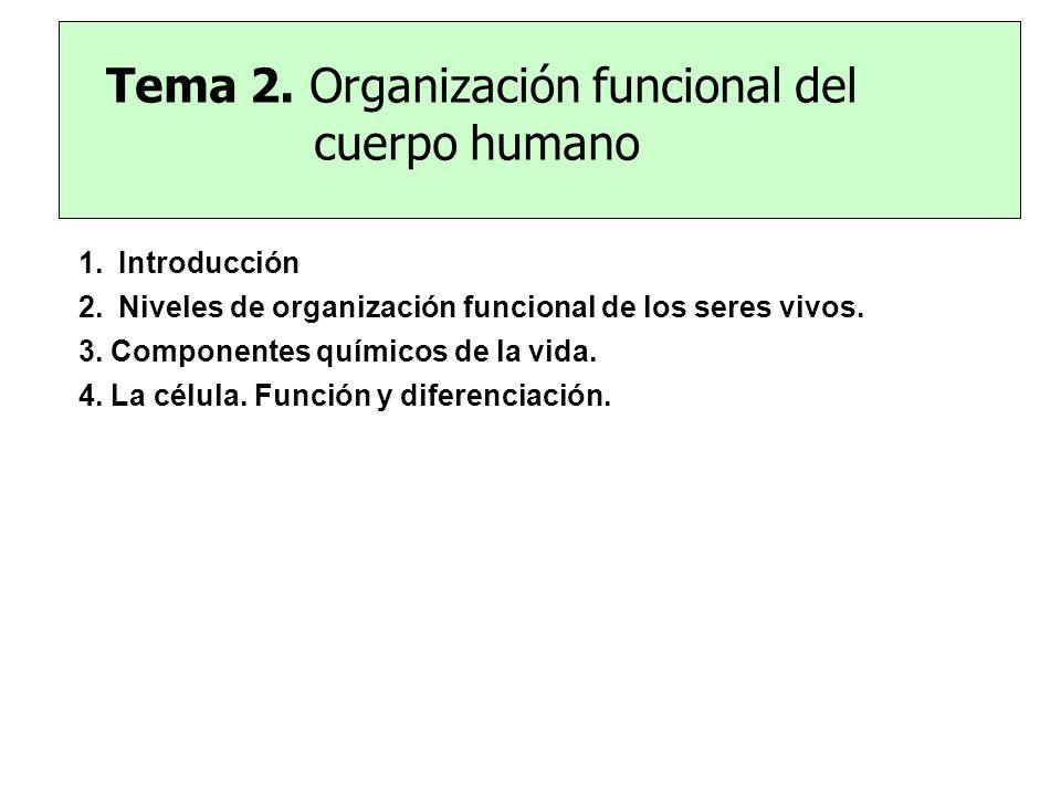 Tema 2. Organización funcional del cuerpo humano 1.Introducción 2.Niveles de organización funcional de los seres vivos. 3. Componentes químicos de la