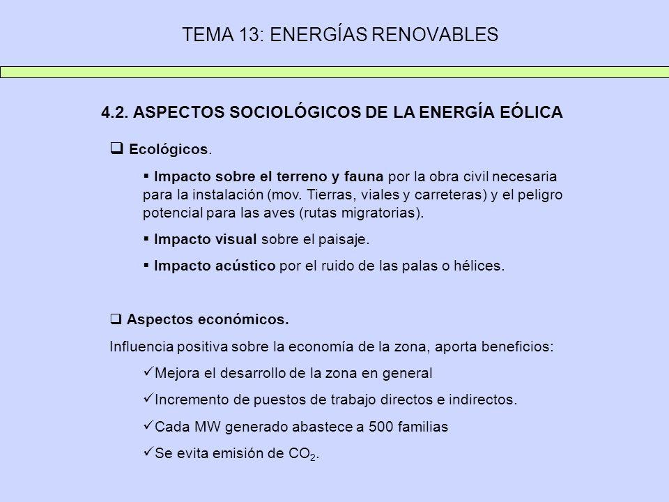 TEMA 13: ENERGÍAS RENOVABLES 4.2. ASPECTOS SOCIOLÓGICOS DE LA ENERGÍA EÓLICA Ecológicos. Impacto sobre el terreno y fauna por la obra civil necesaria