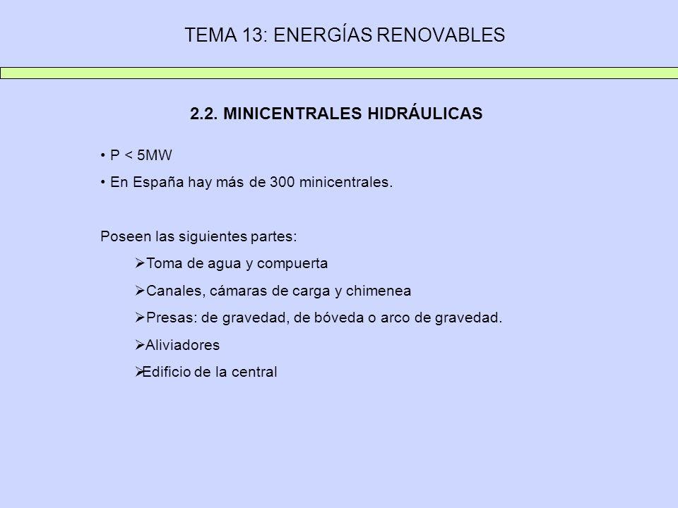 2.2. MINICENTRALES HIDRÁULICAS P < 5MW En España hay más de 300 minicentrales. Poseen las siguientes partes: Toma de agua y compuerta Canales, cámaras