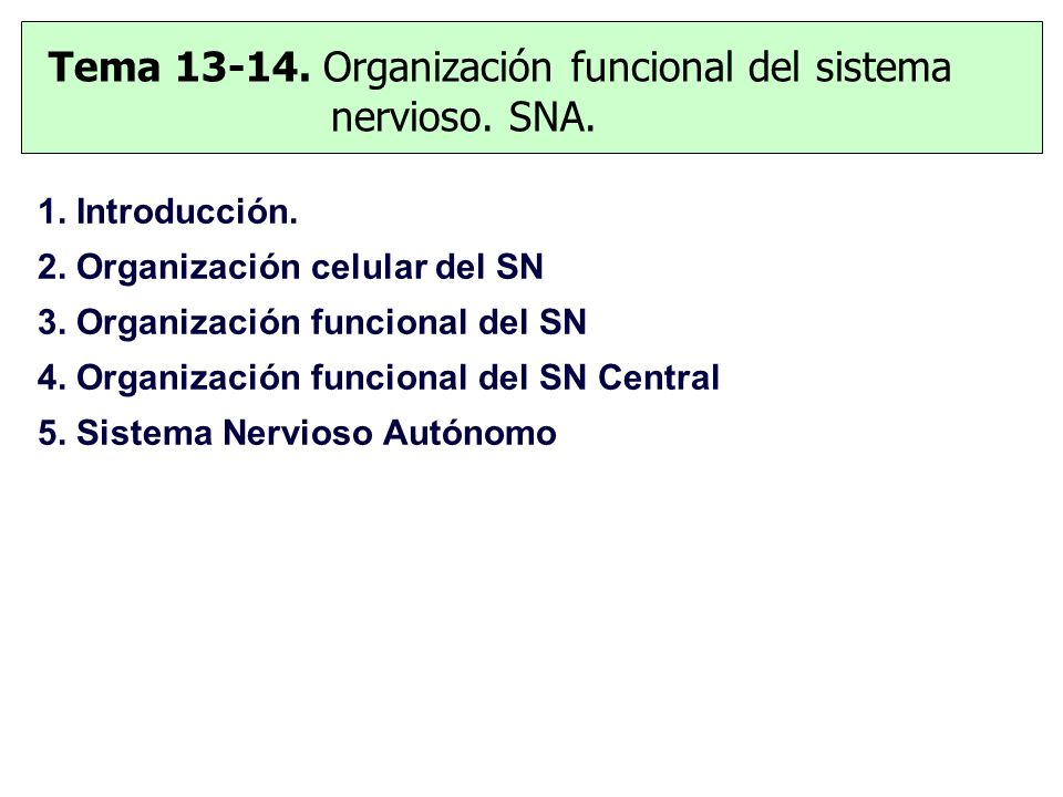 Tema 13-14. Organización funcional del sistema nervioso. SNA. 1. Introducción. 2. Organización celular del SN 3. Organización funcional del SN 4. Orga