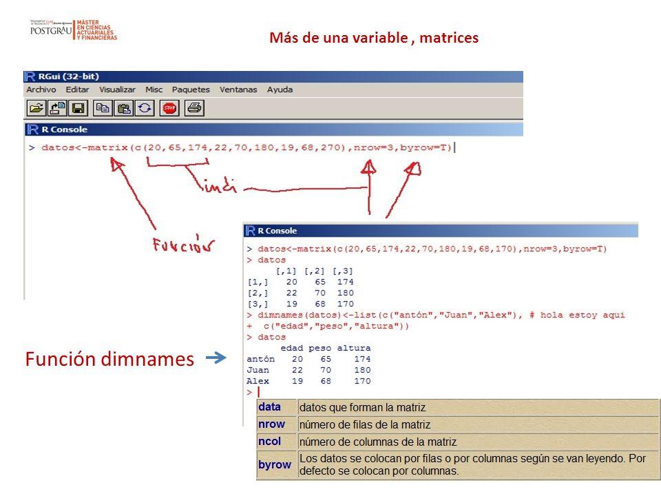 Más de una variable, matrices Función dimnames
