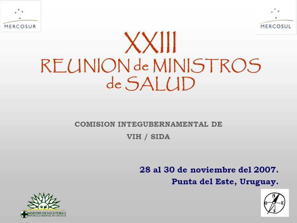 XXIII REUNION de MINISTROS de SALUD 28 al 30 de noviembre del 2007. Punta del Este, Uruguay. COMISION INTEGUBERNAMENTAL DE VIH / SIDA