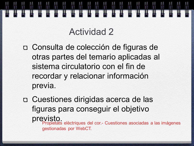Consulta de colección de figuras de otras partes del temario aplicadas al sistema circulatorio con el fin de recordar y relacionar información previa.