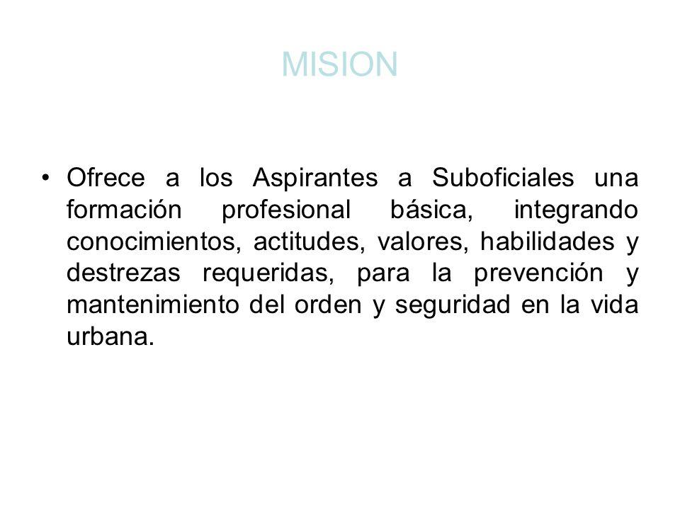 VISIÓN Institución reconocida por la búsqueda de la excelencia profesional en su gestión educativa.