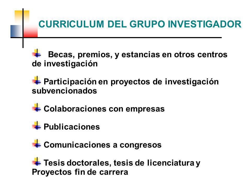 Becas, premios, y estancias en otros centros de investigación Participación en proyectos de investigación subvencionados Colaboraciones con empresas P