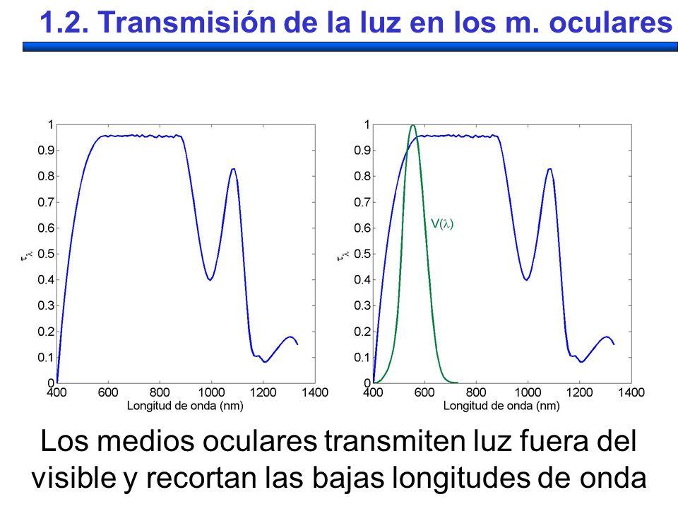 Los medios oculares transmiten luz fuera del visible y recortan las bajas longitudes de onda 1.2. Transmisión de la luz en los m. oculares