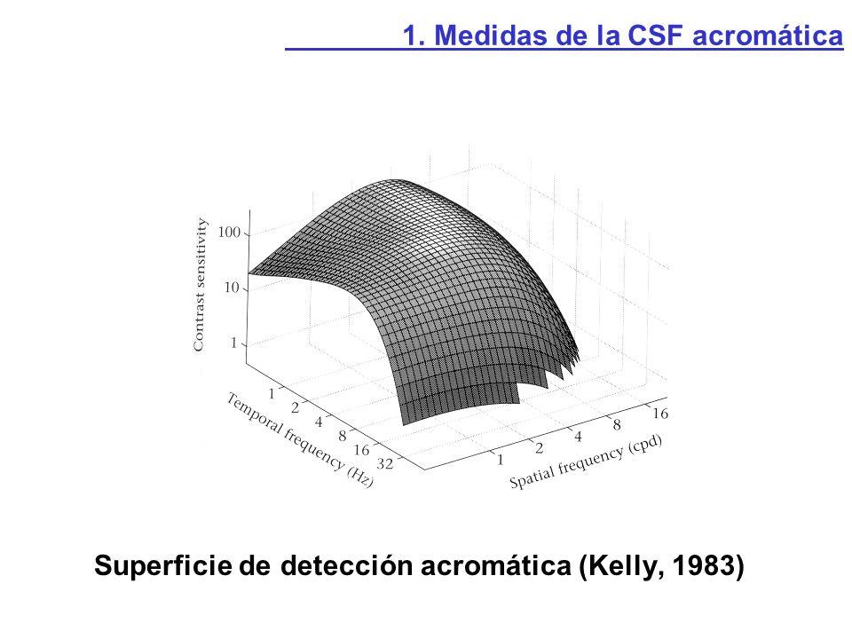 Superficies Magno y Parvo obtenidas mediante lesiones selectivas (Schiller y Merigan, 1993) 1.