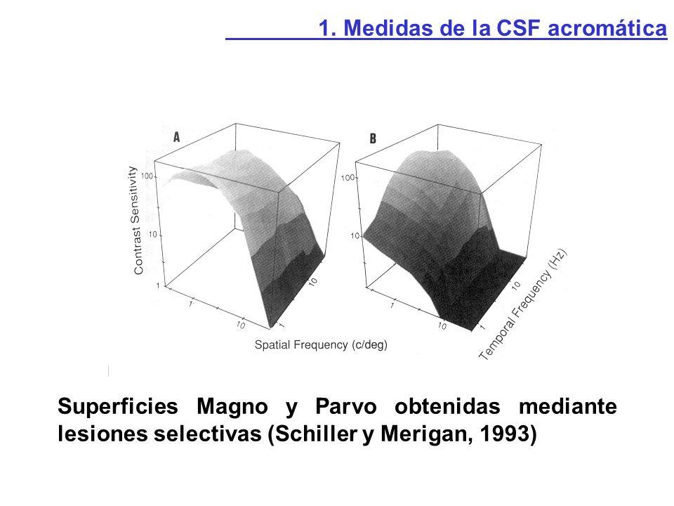 Ejemplo: Glaucoma 1.1. CSF espacial