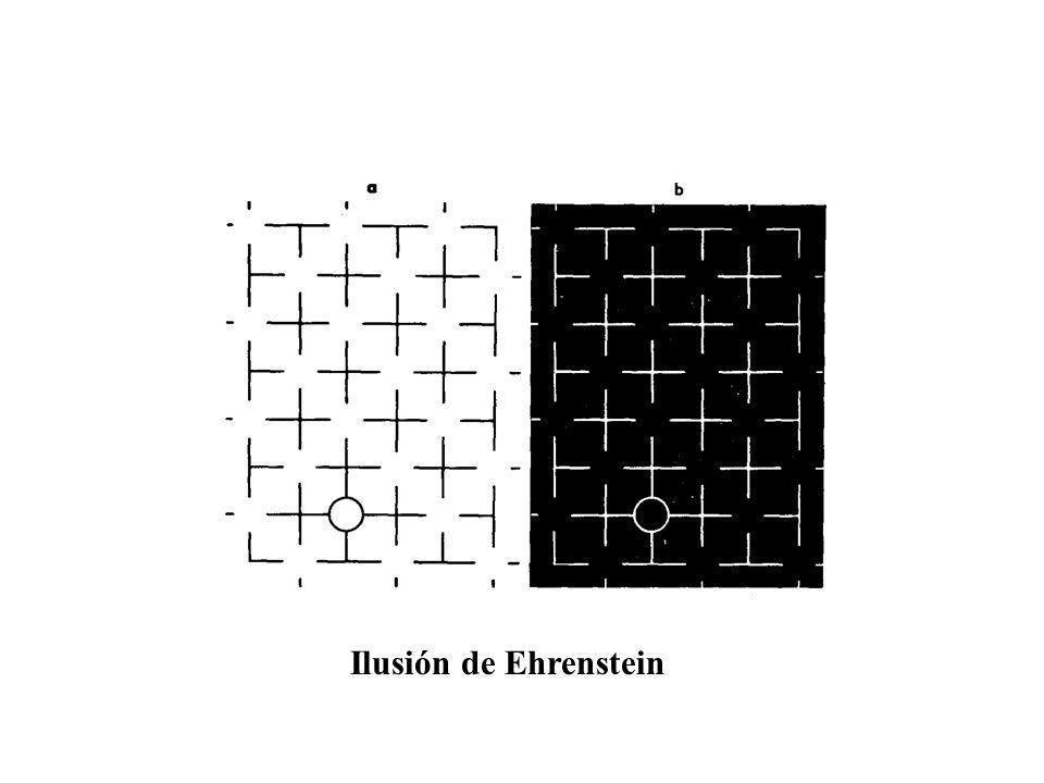 Ilusión de Ehrenstein